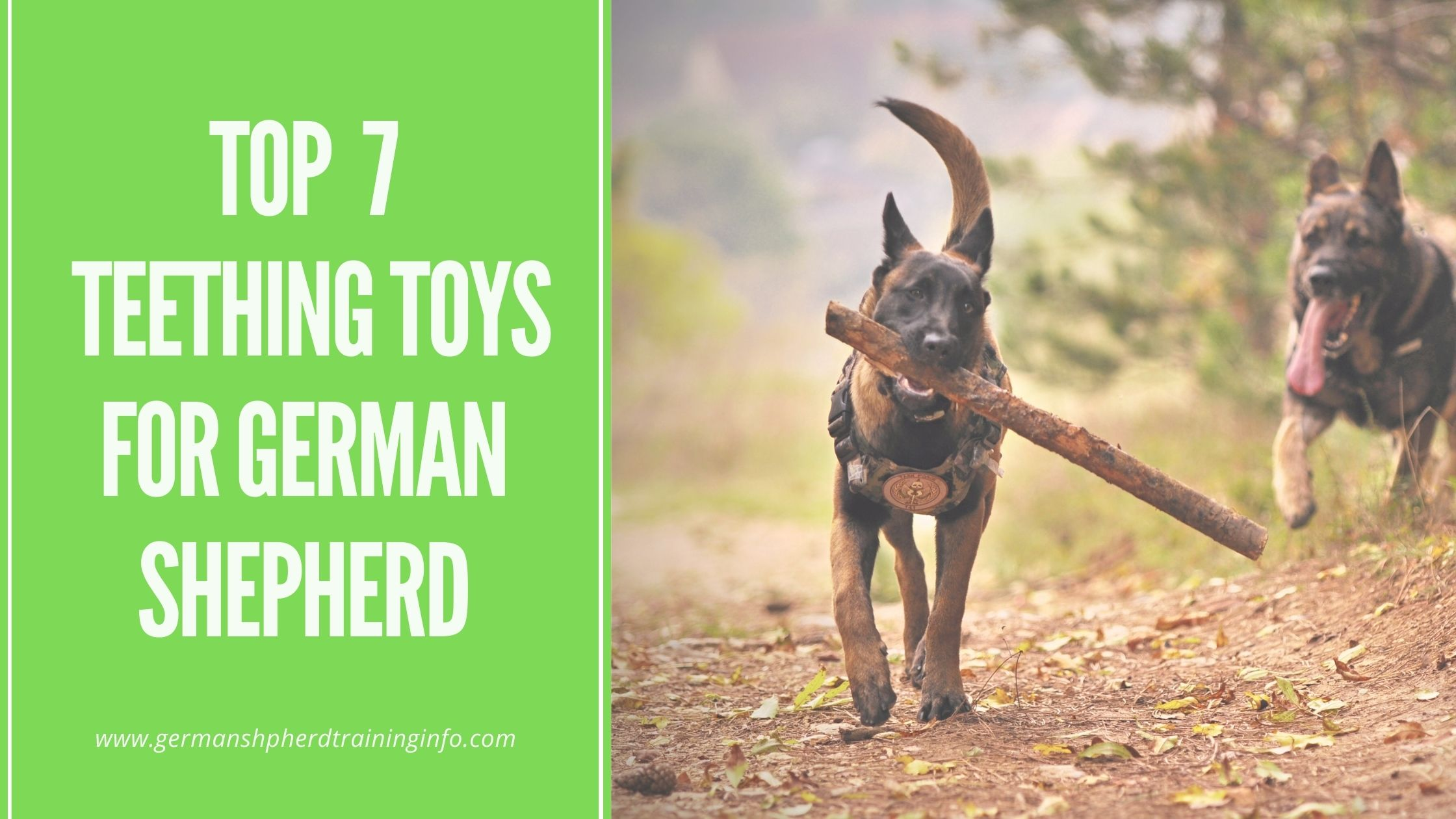List of top 7 teething toys for german shepherd dogs