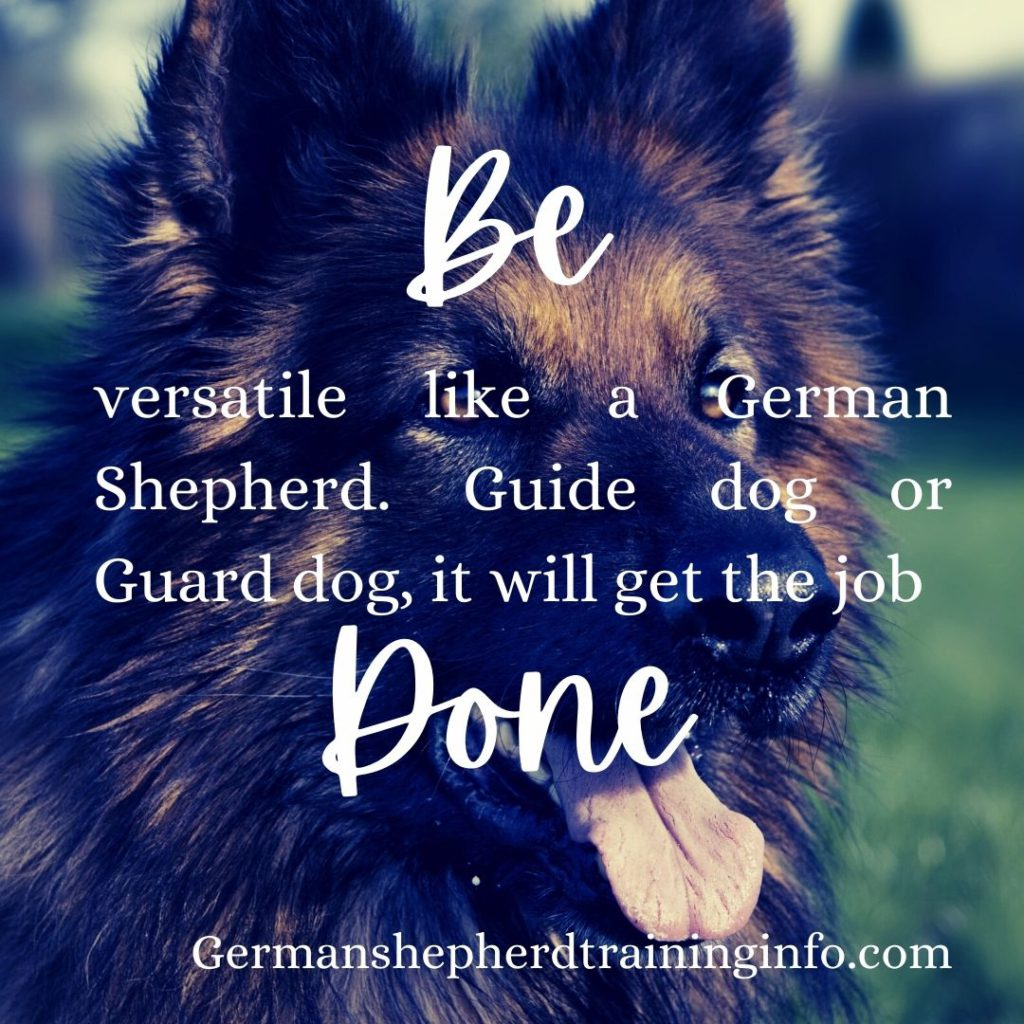 most inspirational german shepherd quotes